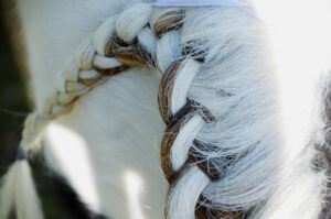 Spanish braid from above, brown and white mane